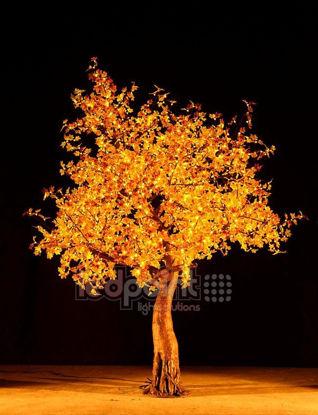 Foto de Arce alto 2,8 m hojas amarillas 24V con cables escondidos