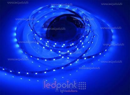 Foto de Tira de led 5m azul 3528 60led/m 12V 4,8W/m