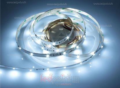 Foto de Tira de led 5m blanco frío 6000-6500K 2835 30led/m Honglitronic 12V 7,2W/m control de corriente