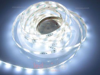 Foto de Tira de led 5m blanco frío 6400-6650K 2835 36led/m Honglitronic IP53 (IP65) 24V 8,6W/m control de corriente