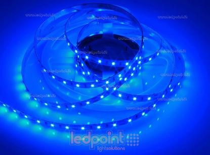 Foto de Tira de led 5m azul 2835 60led/m 12V 14,4W/m