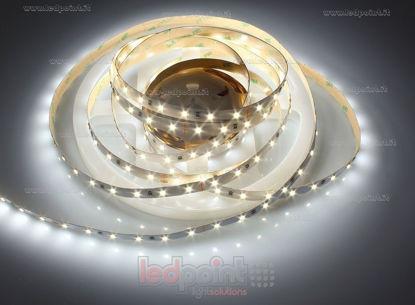 Foto de Tira de led 10m blanco 3800-4000K 2835 60led/m Honglitronic 24V 14,4W/m